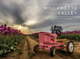 Willamette Valley by Barbara Tricarico Photography